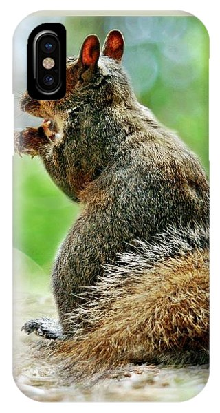Harry The Squirrel IPhone Case