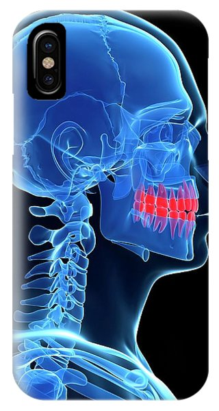 Human Teeth Phone Case by Sebastian Kaulitzki