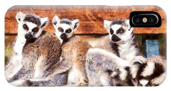 Ring-tailed Lemur iPhone Case - Ring Tailed Lemurs by George Atsametakis