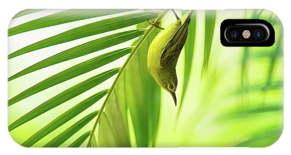 Pose iPhone Case - 50 Shades Of Green by Daniele Bariviera