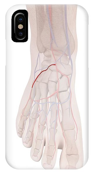 Human Foot Anatomy Phone Case by Sciepro