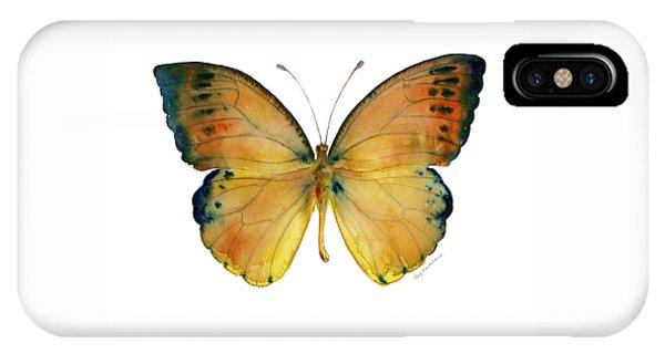 53 Leucippe Detanii Butterfly IPhone Case