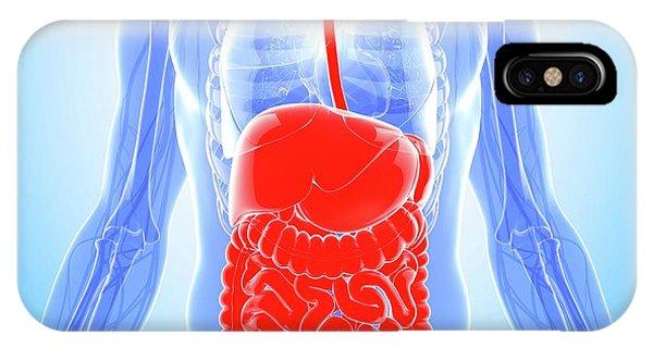 Human Digestive System Phone Case by Pixologicstudio