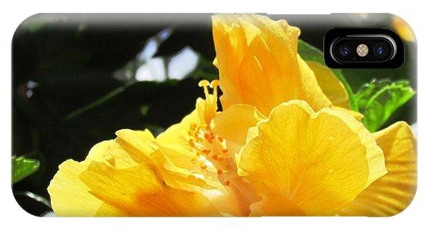 Boquete Flower IPhone Case