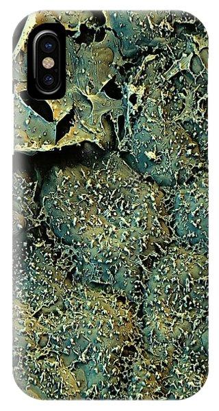 Broccoli iPhone Case - Broccoli by Stefan Diller