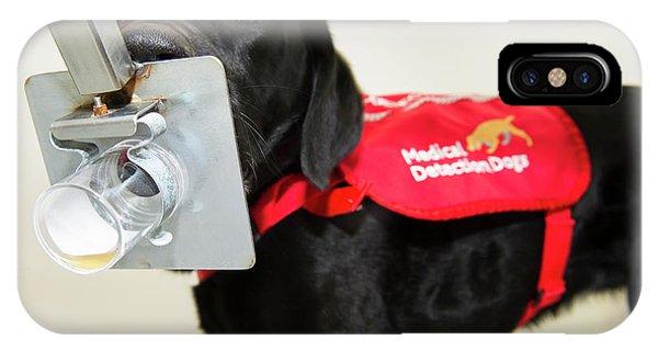 Cancer Detection Dog Training IPhone Case