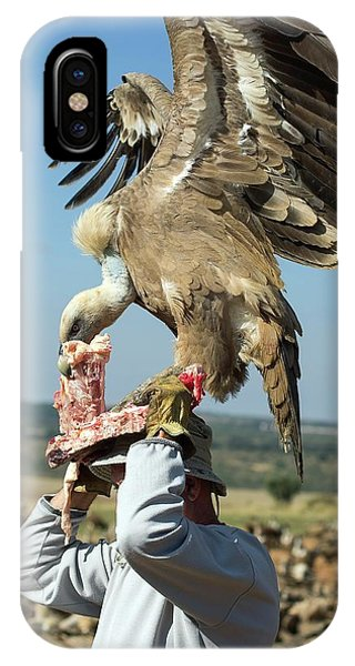 Griffon iPhone Case - Griffon Vulture Conservation by Nicolas Reusens