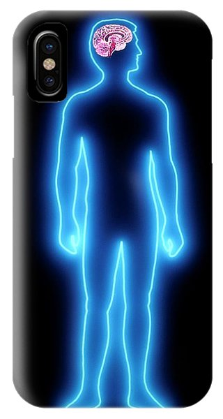 Brainstem iPhone Case - Human Brain by Alfred Pasieka/science Photo Library
