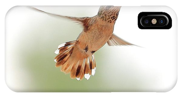 Humming Bird IPhone Case