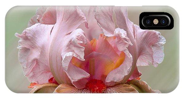 Pink Electrabrite Bearded Iris IPhone Case