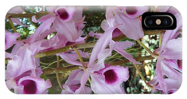 Orchids--dendrobium IPhone Case
