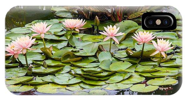 6 Pink Waterlilies Phone Case by Jill Bell