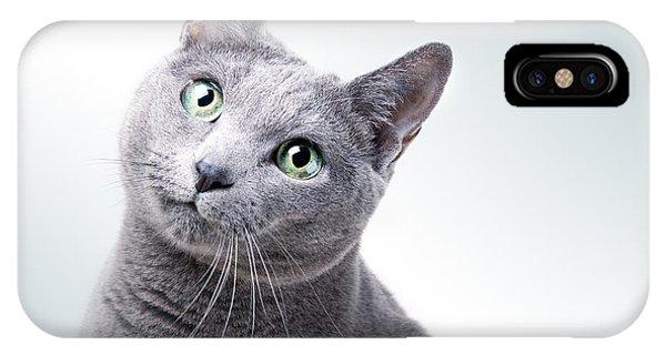 Cat iPhone Case - Russian Blue Cat by Nailia Schwarz
