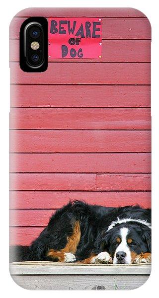 Bernese Mountain Dog iPhone Case - Usa, Colorado, Breckenridge by Jaynes Gallery