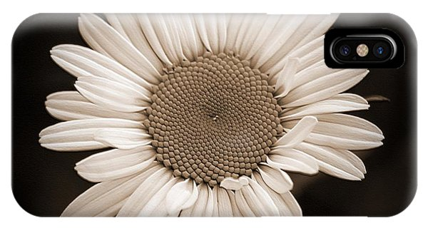 Wildflower Named Oxeye Daisy IPhone Case