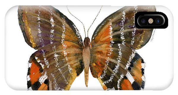 Moth iPhone Case - 60 Euselasia Butterfly by Amy Kirkpatrick