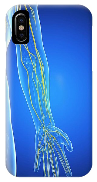 Nervous System Phone Case by Sciepro/science Photo Library