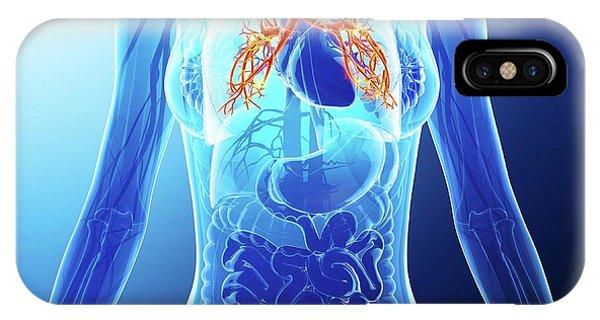 Human Cardiovascular System Phone Case by Pixologicstudio