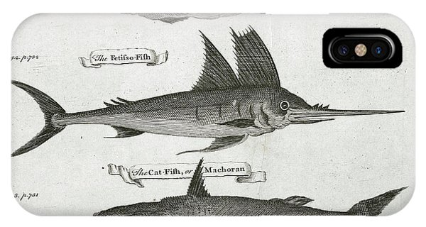 Catfish iPhone Case - Fish by British Library