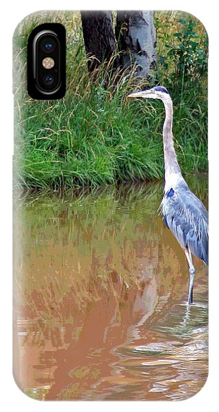 Blue Heron On The East Verde River IPhone Case