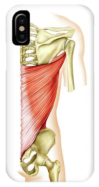 Shoulder Muscles Phone Case by Asklepios Medical Atlas