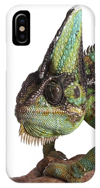Veiled Chameleon Phone Case by Science Photo Library