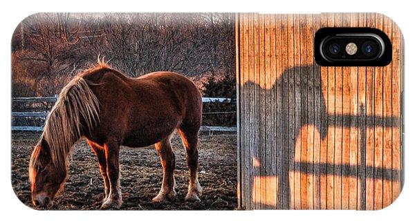 7056 Horse Shadow Phone Case by Deidre Elzer-Lento