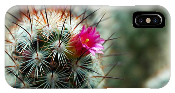 734a Tubular Cactus Flower IPhone Case