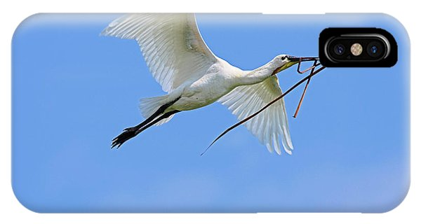 Migratory Birds iPhone Case - Eurasian Spoonbill Or Common Spoonbill by Martin Zwick