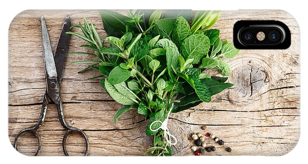 Provence iPhone Case - Kitchen Herbs by Nailia Schwarz
