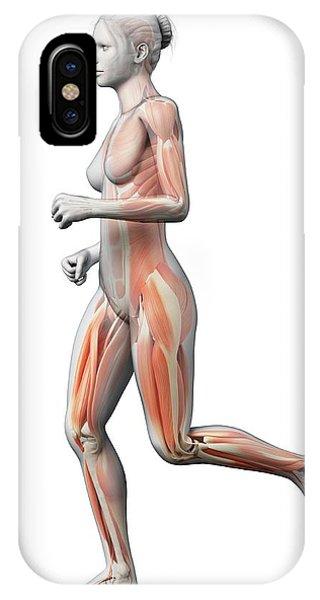 Muscular System Of Runner Phone Case by Sebastian Kaulitzki