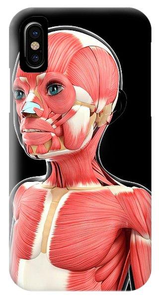 Platysma Muscle iPhone Cases | Fine Art America