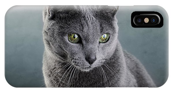 Purebred iPhone Case - Russian Blue Cat by Nailia Schwarz