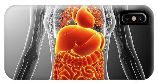 Human Internal Organs Phone Case by Pixologicstudio