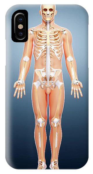 Male Skeleton Phone Case by Pixologicstudio/science Photo Library
