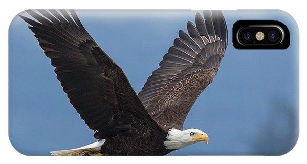iPhone Case - Bald Eagle by Ken Archer