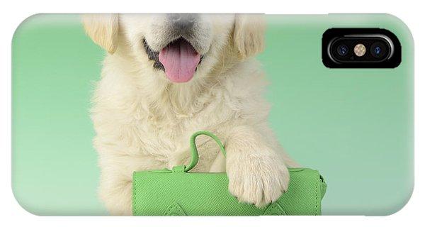 9 To 5 Labrador IPhone Case