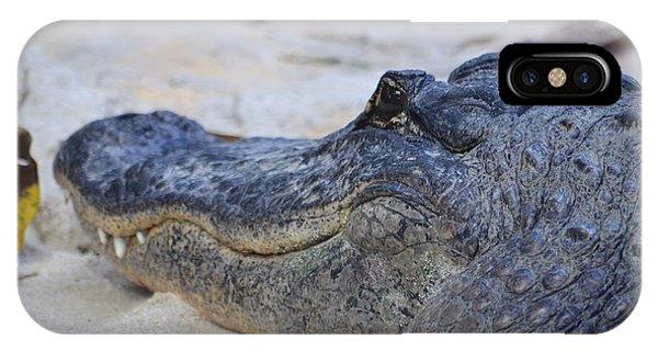 A Alligator IPhone Case