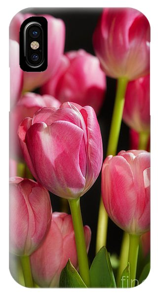 A Bouquet Of Pink Tulips IPhone Case