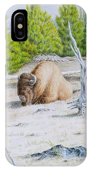 A Buffalo Sits In Yellowstone IPhone Case