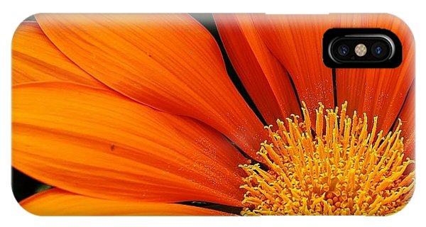 A Burst Of Orange Phone Case by Bruce Bley