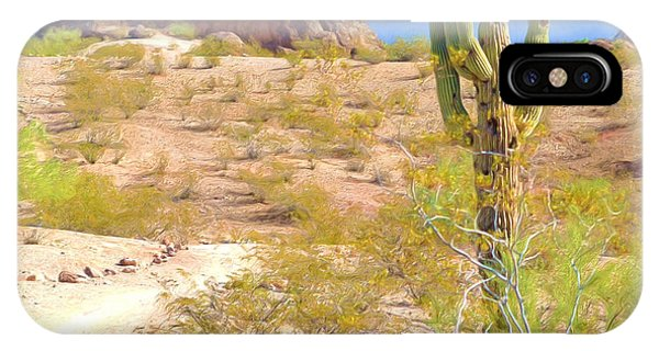 A Cactus In The Arizona Desert IPhone Case