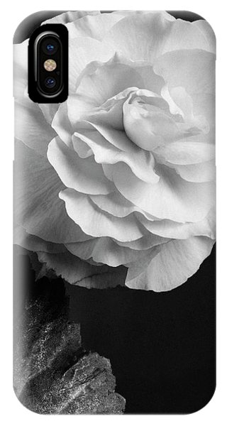 A Camellia Flower IPhone Case