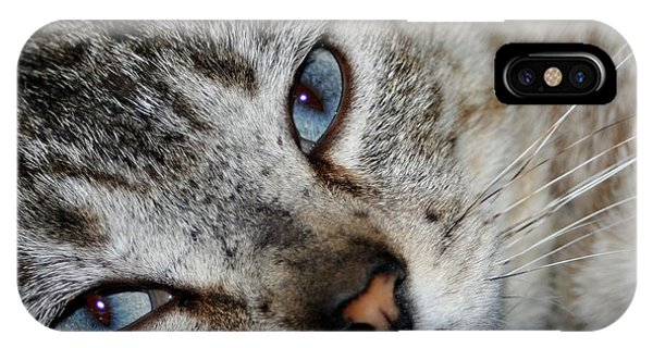 A Cat Named...blue IPhone Case