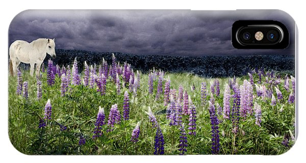 IPhone Case featuring the photograph A Childs Dream Among Lupine by Wayne King