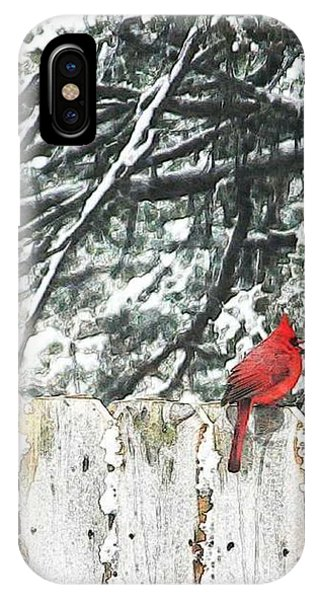 A Christmas Cardinal IPhone Case