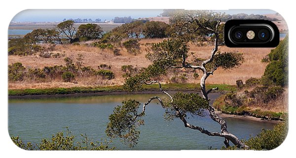 A Cove In Late Summer At Elkhorn Slough IPhone Case