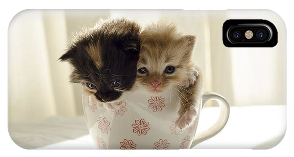 A Cup Of Cuteness IPhone Case
