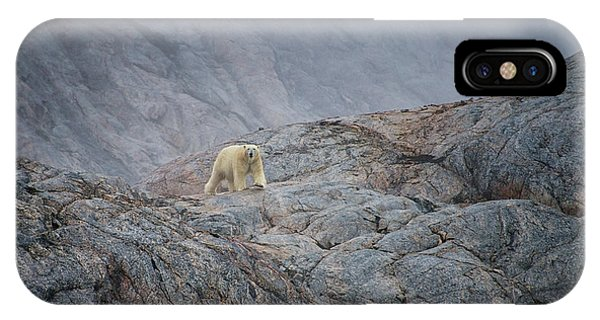 iPhone Case - A Curious Polar Bear Approaching A Boat by Andy Mann