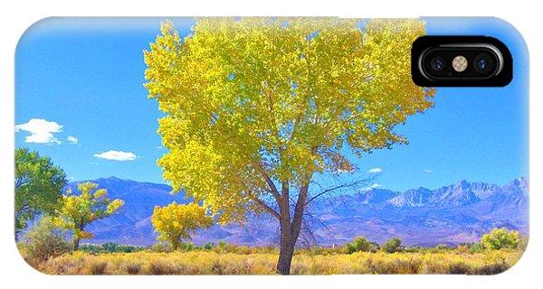 A Desert Autumn IPhone Case
